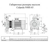����� ������������� Calpeda NMS 65/250A (60T01801000) �2