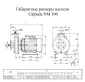 ����� ������������� Calpeda NM 100/200E/A �2